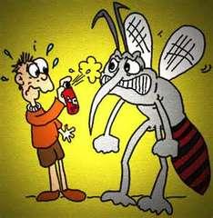 Zeeee-ing….[Smack]! Mosquitos.